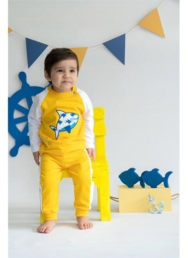 Nila Kids Shark in Yellow Organik Erkek Bebek Sweatshirt Sarı